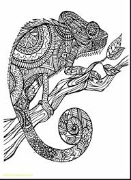 Animal Mandala Coloring Pages Coloring Page Free Of Animal Mandala