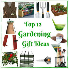 i love gardening and have some great gardening gift ideas for you i tinker with plants during the winter but now is the time that i m in full swing looking