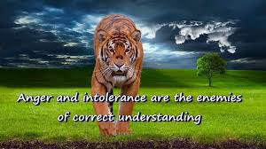 Tiger Quotes 4 Best Anger Quotes