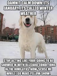 Finniest-Snow-Memes-Ever11.jpg via Relatably.com