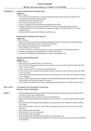 Advertising Producer Sample Resume Promotions Producer Resume Samples Velvet Jobs 22