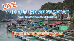 Seafood Watch - Home