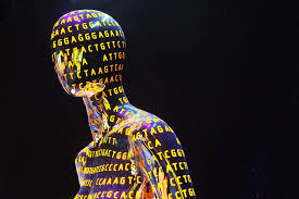 Image result for human genome