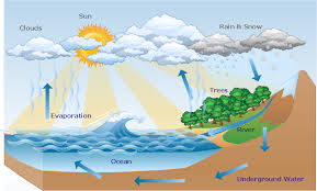 water cycle diagram   drawing illustration   drawing a nature    hydrologic cycle diagram