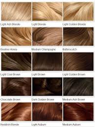Whats Your Favorite Hair Color In 2019 Clairol Hair