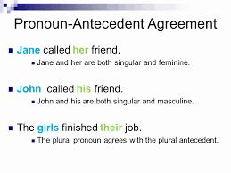 Pronoun Antecedent Agreement Pronoun Antecedent Agreement Examples Pronoun Agreement Examples