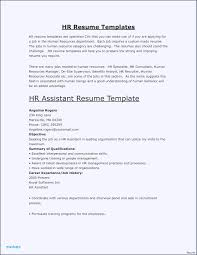 Free Hair Stylist Resume Templates Download Achance2talkcom