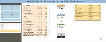 Dynamic Common Size And Dupont Analysis Financial Statements In
