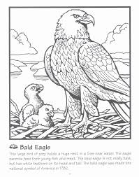 Coloring Pages Of Eagle Coloring Pages Of Eagle Flag Coloring