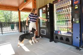 Dog Treat Vending Machine Simple Vending Area Featuring K48 Treats Lake George RV Park