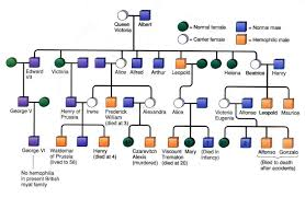 Queen Victoria Family Tree Showing The Carriers And