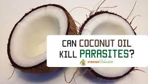 does coconut oil kill parasites