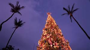 Uber Promo Code HonoluluChristmas Tree Hawaii