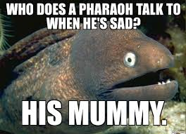 Bad Joke Eel Know Your Meme - bad joke eel know your meme and Meme ... via Relatably.com