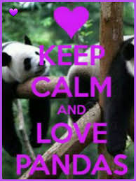 Quotes About Pandas Amazing Pin By Marjolein R On Dieren Pinterest Calming