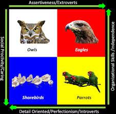 Celebrity Personality Types Birding Is Fun Birder Personality Profiles Celebrity