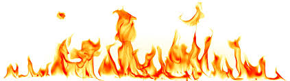 Image result for feuer