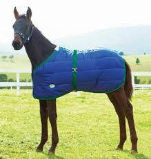 Weatherbeeta Newborn Foal Blanket