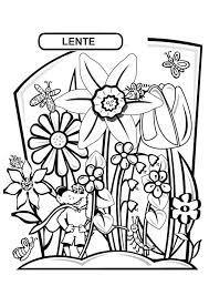 Mandala Kleurplaat Volwassenen Bloemen Mandala Kleurplaat Vector
