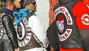 A Mo Bb Mongrel Mob Black Power Nomads Tribesmen Gangs Unite To Vote