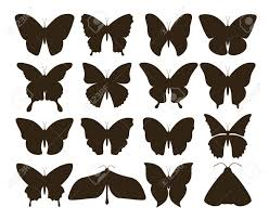 Silhouette Butterflies Simple Collection Of Hand Drawn Black