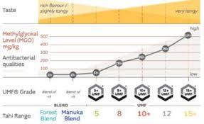 4 Out Of 5 Jars Of Manuka Honey Are Fake