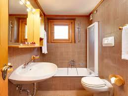 Apartment Bathroom Decorating Ideas On A Budget Modern Bathroom