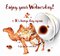 Enjoy Your Wednesday Its Hump Day Coffee Beans And Nuts