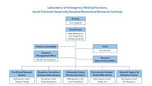 Organizational Chart Of A Hospital Laboratory Www
