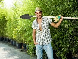 hire gardener garden and modern house image dnauranai