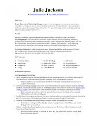 Copywriter Resume Samples Jd Templates Resume Examples Monster Writing Template Example 13