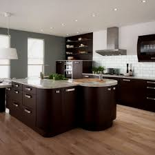 Modern Chic Kitchen Designs Modern Cabinetry In Apartment Kitchen Design Ideas With Panel