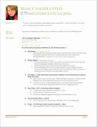Commercial Cleaning Contract Template New Statement Work Template