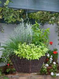Hanging Kitchen Herb Garden Planting A Hanging Basket Hgtv