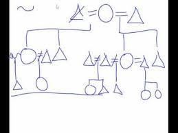 Anthropology Kinship Chart Kinship Diagram Help