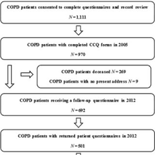 Copd Life Expectancy Chart Flow Chart Ccq Clinical Copd Questionnaire Copd Chronic