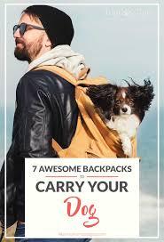 top best dog carrier backpacks