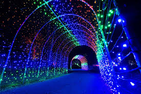 Denver Zoo Holiday Lights Christmas Events In Denver 2019 What To Do This Holiday