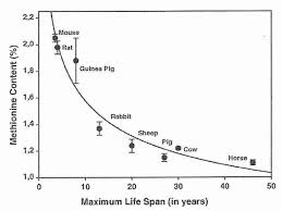 Foods Low In Methionine Chart Life Extension Benefits Of Methionine Restriction