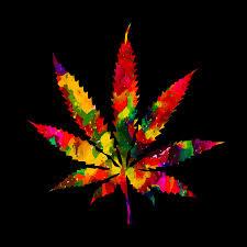 cannabis oil recreational use