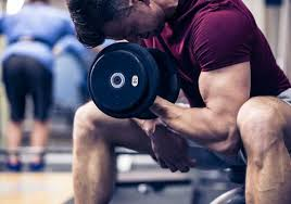 top 15 tips for building muscle