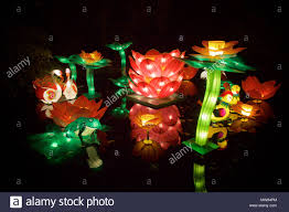 december 2014 background.  December Flowers And Animals Against Pure Black Background On The China Lights  Festival 10 December 2014 Antwerp Belgium In 2014 Background
