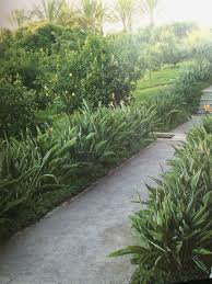 best olive garden salisbury home decoration ideas designing marvelous decorating with interior design trends