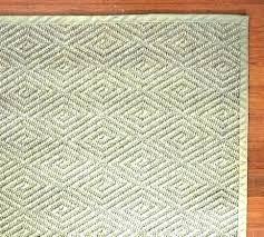 color bound sisal rug pottery barn 3x5