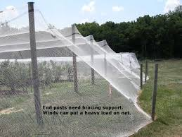 bird netting for garden. Simple Garden Single Row Netting For Homeowners On Bird For Garden