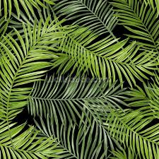 Palm Leaf Pattern Cool Tropical Palm Leaves Pattern Wallpaper Wall Mural Wallsauce Canada