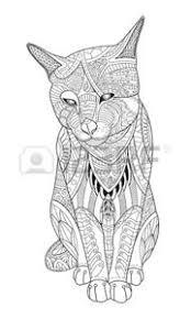 Colorare Mandala Disegno Gattino Da Colorare Per Gli Adulti
