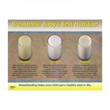 Breast Milk Color Chart Breastmilk Babys Best Nutrition Chart