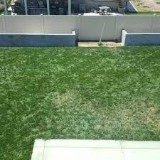 trugreen before and after photo of lawn care ca united states this is after trugreen reviews trugreen before and after lawn care