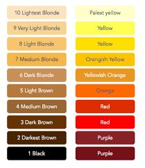 Hair Bleach Level Chart 72 Qualified Bleaching Hair Color Level Chart